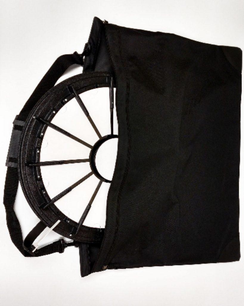 MINI Prize Wheel Travel Bag